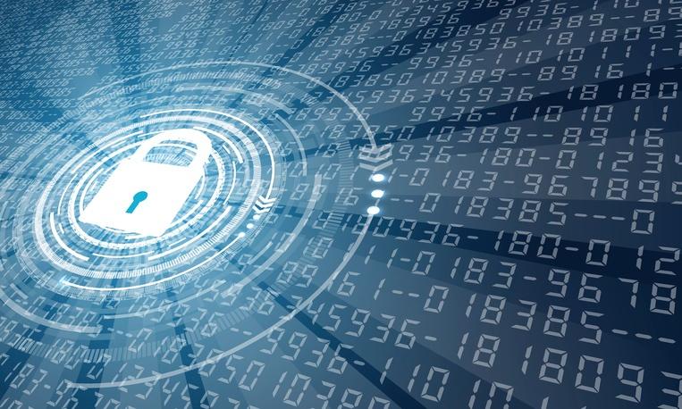 seguridad de la informacion en las organizaciones