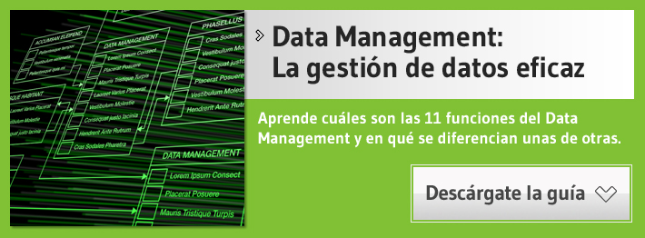 data management guia gratuita